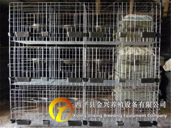 鸽子笼 鸽笼养殖笼 配对笼 12位肉鸽笼子加粗信鸽